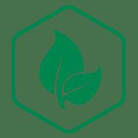 sistema_eco